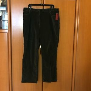 Pants - Green rubbed velour fabric pants